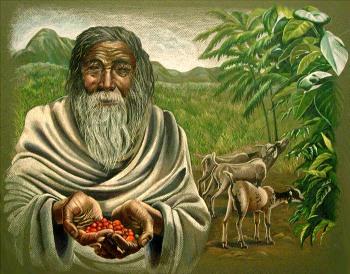 Pasterz który odkrył kawę